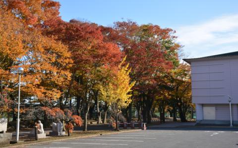 青森県立八戸高等学校